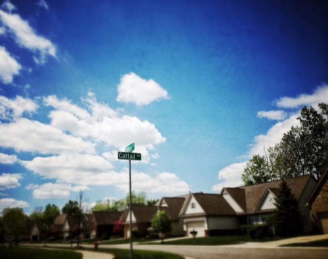neighborhood-8